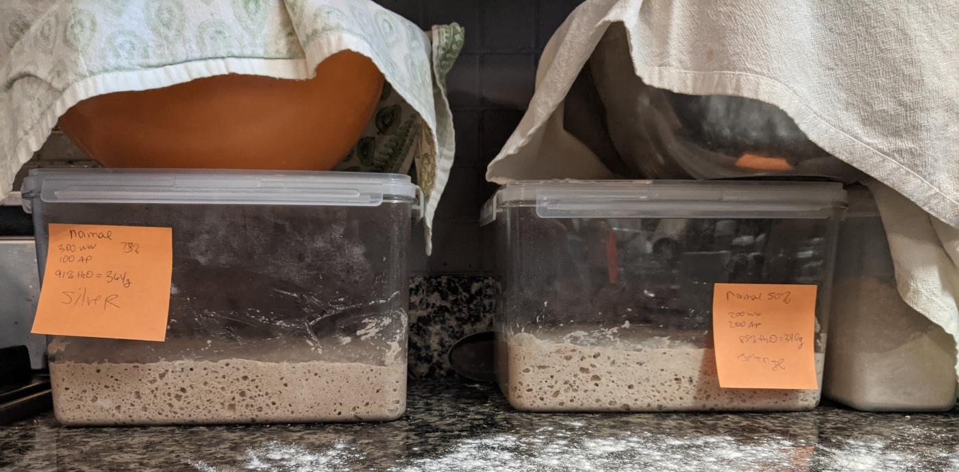 two containers side by side with dough rising in each