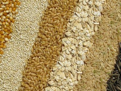 GrainStrip1400.jpg