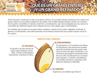 WGC-QuéEsGranoEntero_Page_1.png