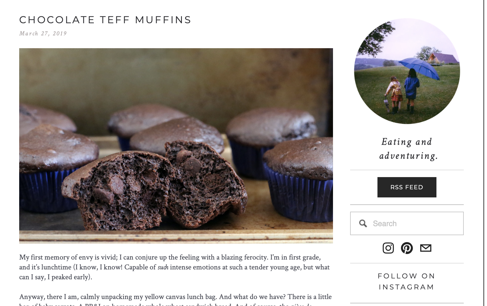 Chocolate_Teff-Muffins_Blog.png