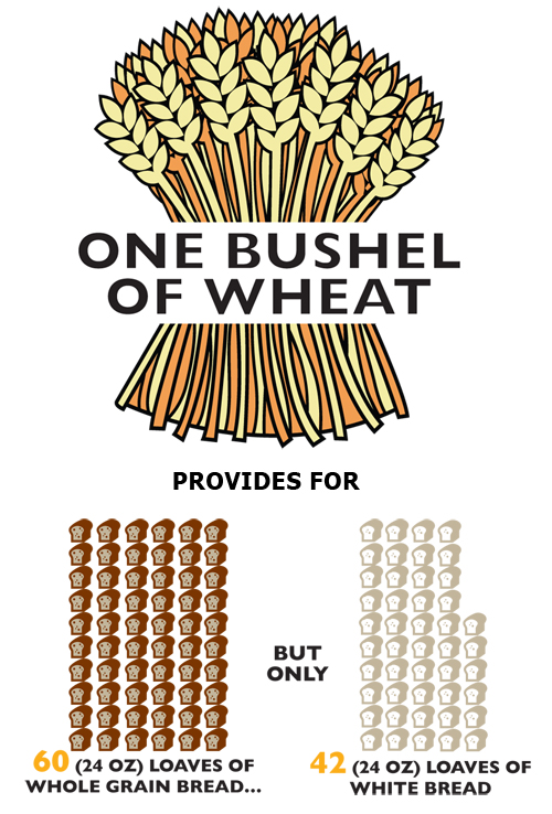 One Bushel Wheat makes 60 loaves whole wheat bread