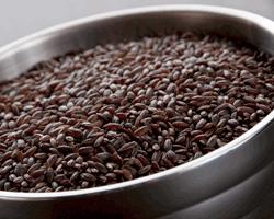 RiceColusariRed.jpg