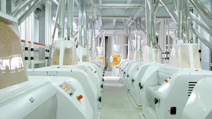 Modern Steel Roller Flour Mill