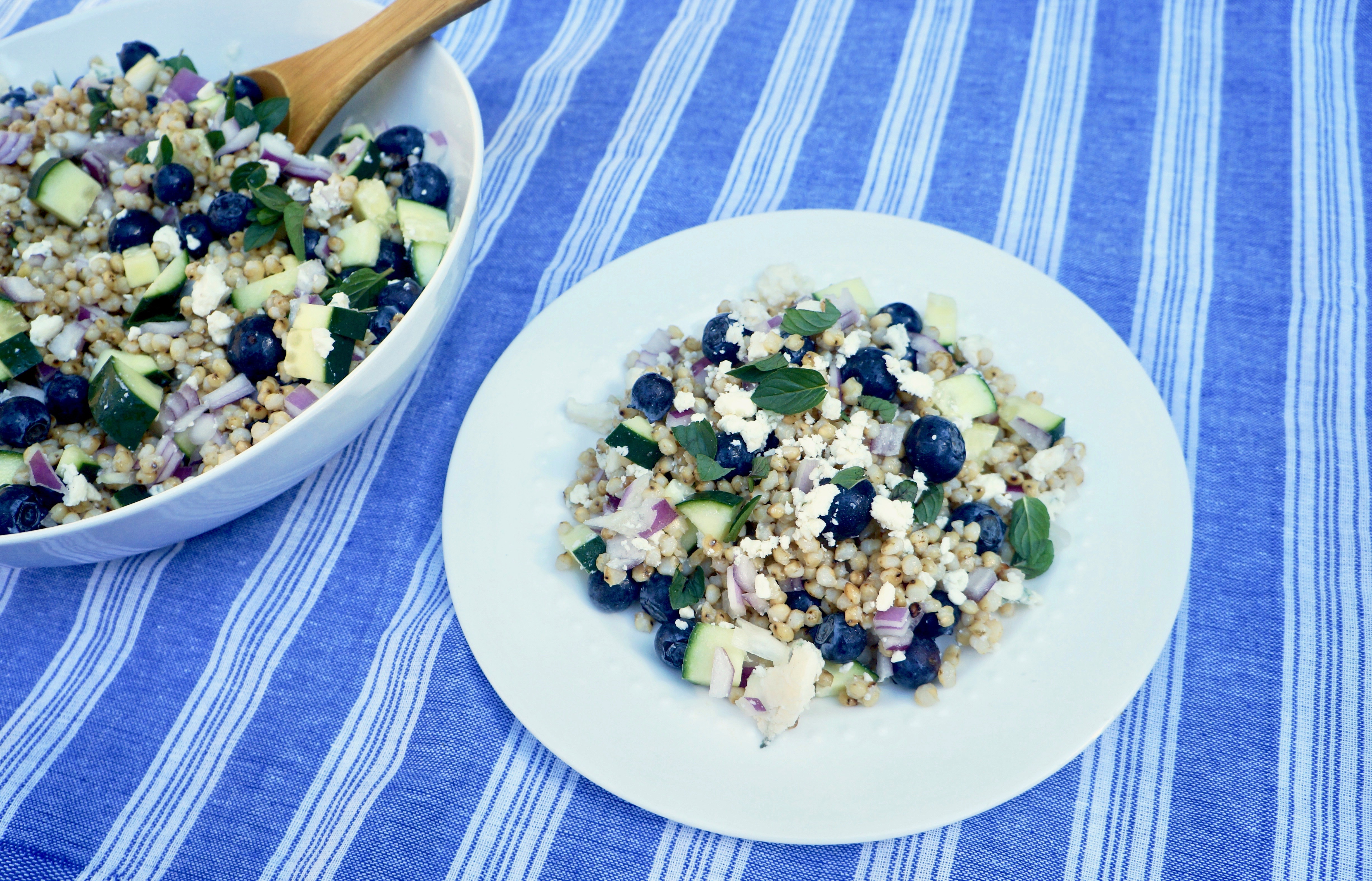 sorghum & blues salad with blueberries and blue cheese