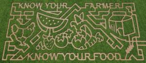 USDA_CornMaze.jpg