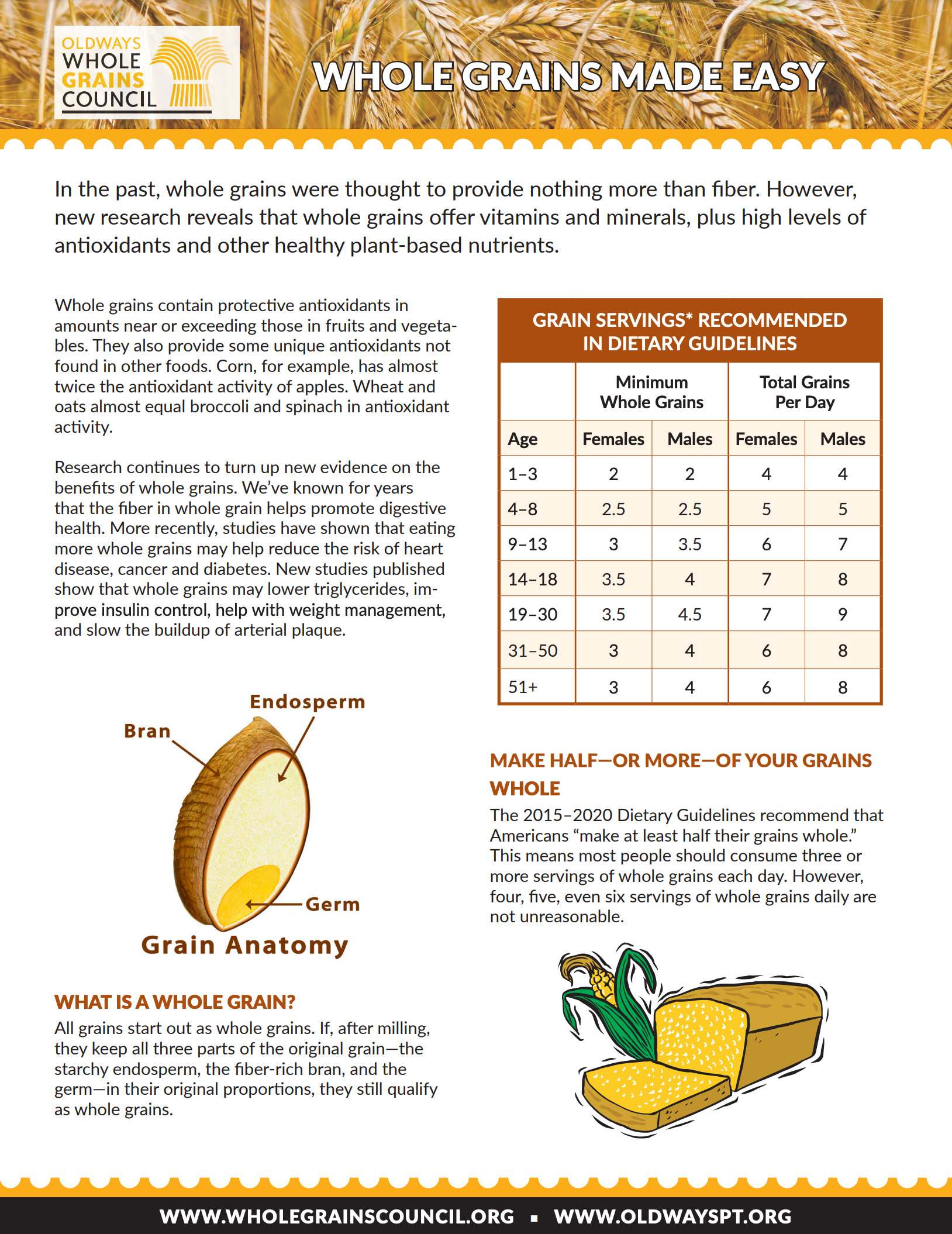 image of a handout about how to eat more whole grains