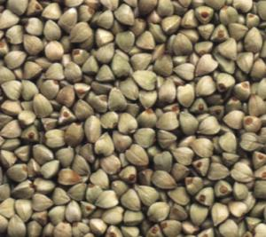 green_buckwheat_small.jpg