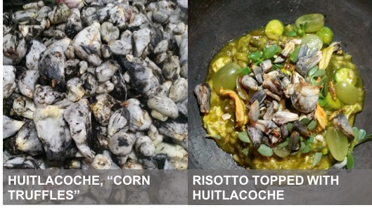 two pictures of huitlacoche