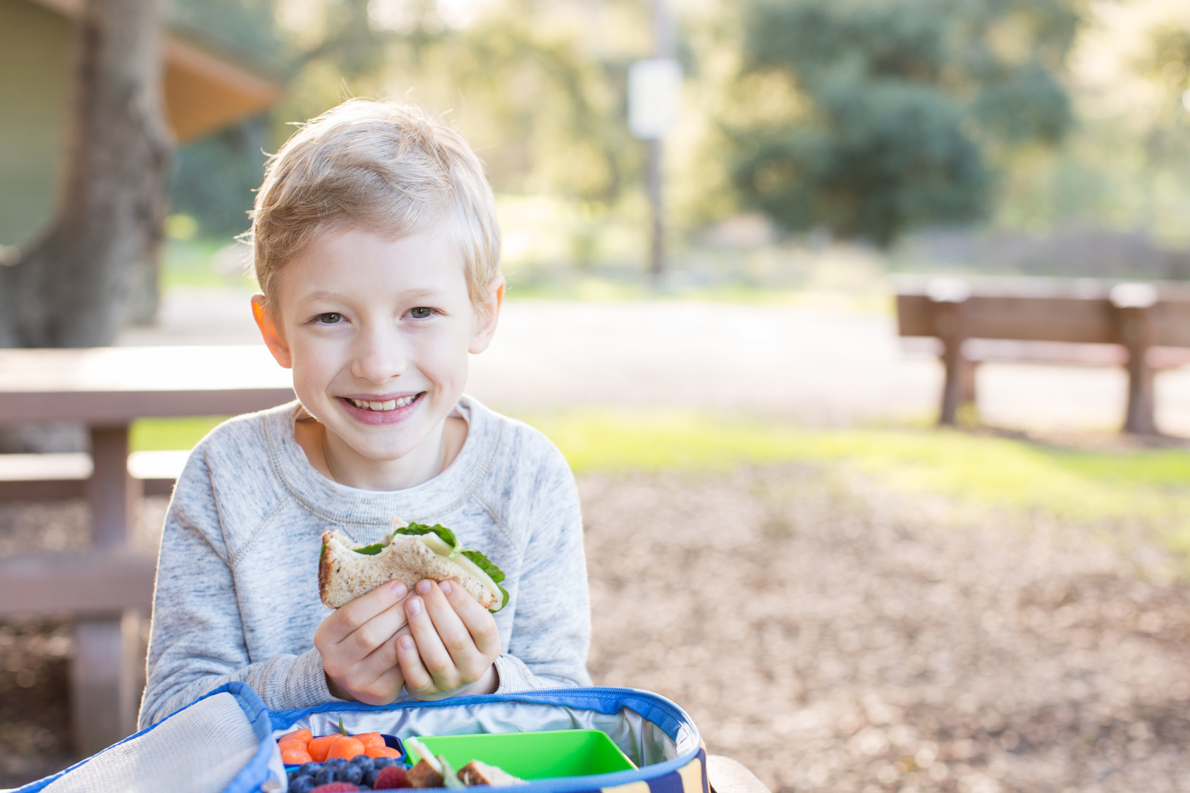 Young Boy Eating a Sandwich on Whole Wheat Bread